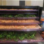 Dehydrated foods Karuna Detox Retreats Raw Food Class